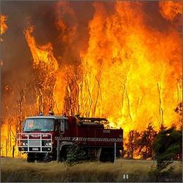 Incendi: Istat, ogni anno 7.200 roghi e 80 ettari di territorio distrutti