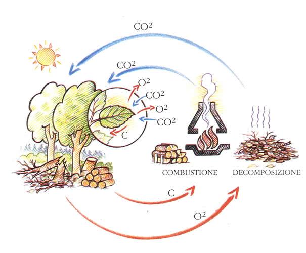 L?efficienza energetica negli usi finali