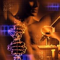 Lotta alle malattie renali: è l'ora dei farmaci biotech