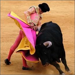 Corrida: a Barcellona vincono i Tori!