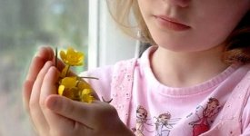 Pedofilia: medici, maestri, capi scout. Così la Gran Bretagna arresta 660 persone in un giorno