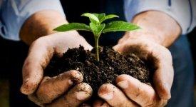 Green economy: quel settore strategico che in Italia crea 101 mld di valore aggiunto