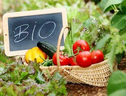 Dall'agricoltura al processo industriale, quando 'Bio' vuol dire salute e conoscenza