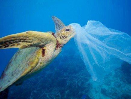 Il Mediterraneo annega...In un mare di plastica!