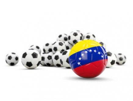 Dal Venezuela all'Italia in amichevoli per 15 giorni con gli sportivi tricolore