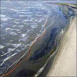 Marea nera: Pagnotta, Cnr: