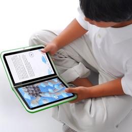 E-book: la lettura è in tasca