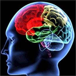 Ictus cerebrale: con le terapie riabilitative miglioramenti anche dopo anni