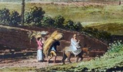 Campagna romana da Villa d'Este (Part)