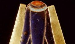Elemento di pettorale a fiore di loto blu - XVIII dinastia, regno di Thutmosi III (1479-1425 a.C.)