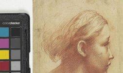 Parmigianino, 'Testa di donna', Firenze, Gabinetto Disegni e Stampe degli Uffizi