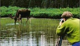 Ecoturismo: il futuro per la natura e l'economia