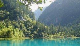 Greenpeace: ecco il decalogo dell'ecoturista