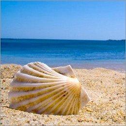 Turismo balneare: in Abruzzo il settore rischia il 'naufragio'