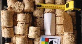 Legno, compost e il sospetto di contaminazioni: ma quanto è davvero green la biomassa?
