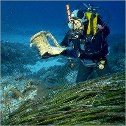 Archeologia subacquea, Coffa: