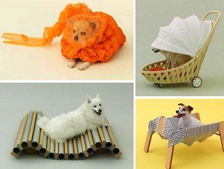 Bizzarre, surreali eppure così cool: dal Giappone le nuove tendenze in fatto di cucce
