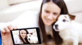 Pets 2.0 star del web, sono loro i re incontrastati di video e selfie bizzarri