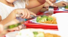 INTERVISTA - Mense bio: Chef Bernardi, «vi racconto l'esempio virtuoso nelle scuole di Marino»